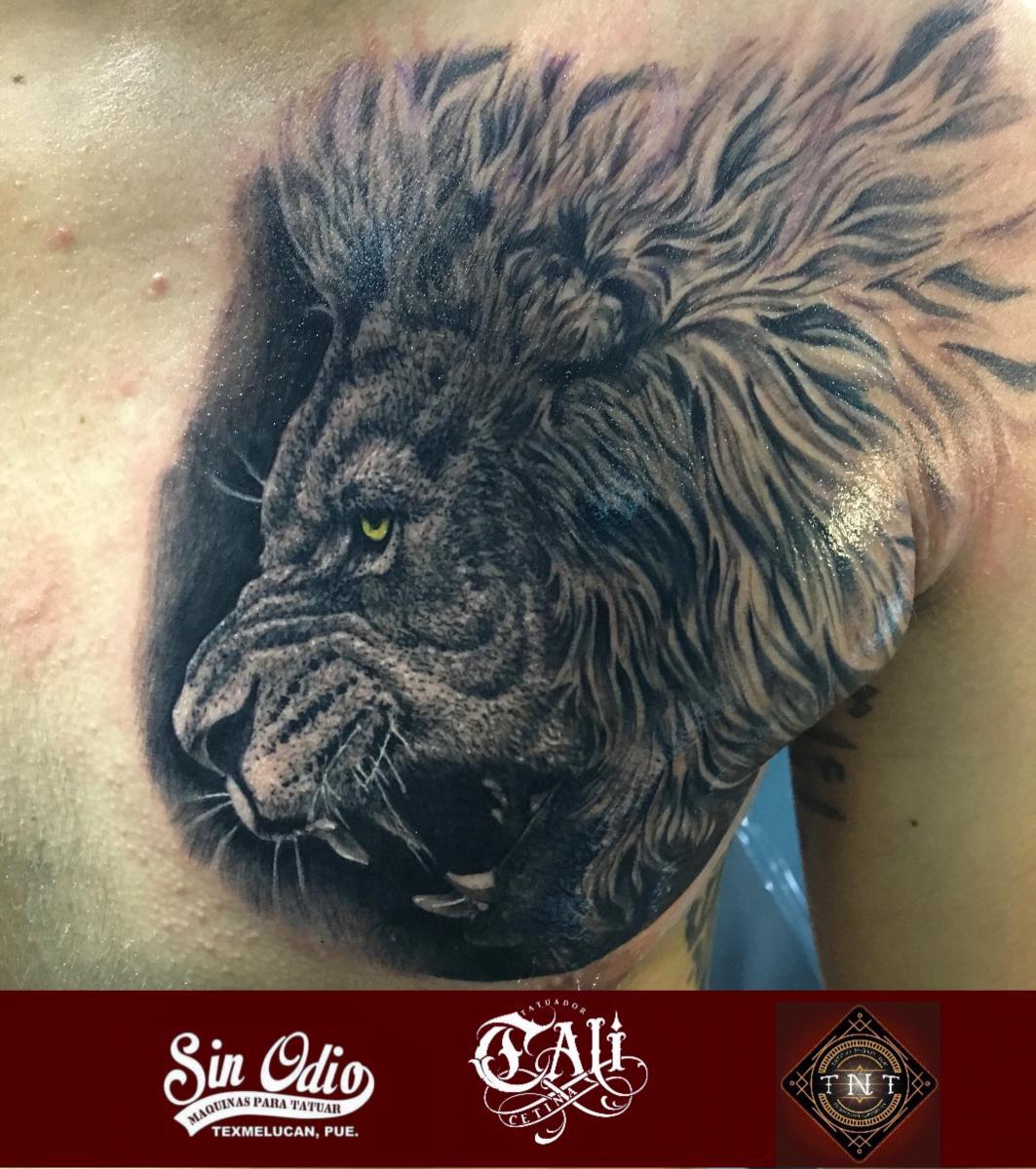 leon en el pecho tatuaje realizado por Cali Cetina