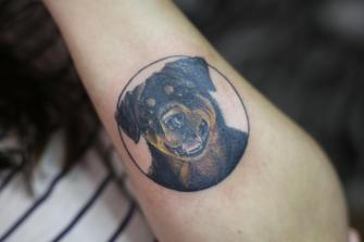 Retrato Rottweiler tatuaje realizado por Old Gangsters Tattoo Shop