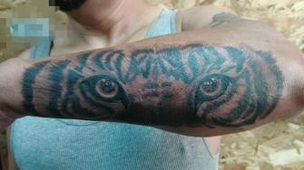 Ojos de tigre tatuaje realizado por Juan Calavera