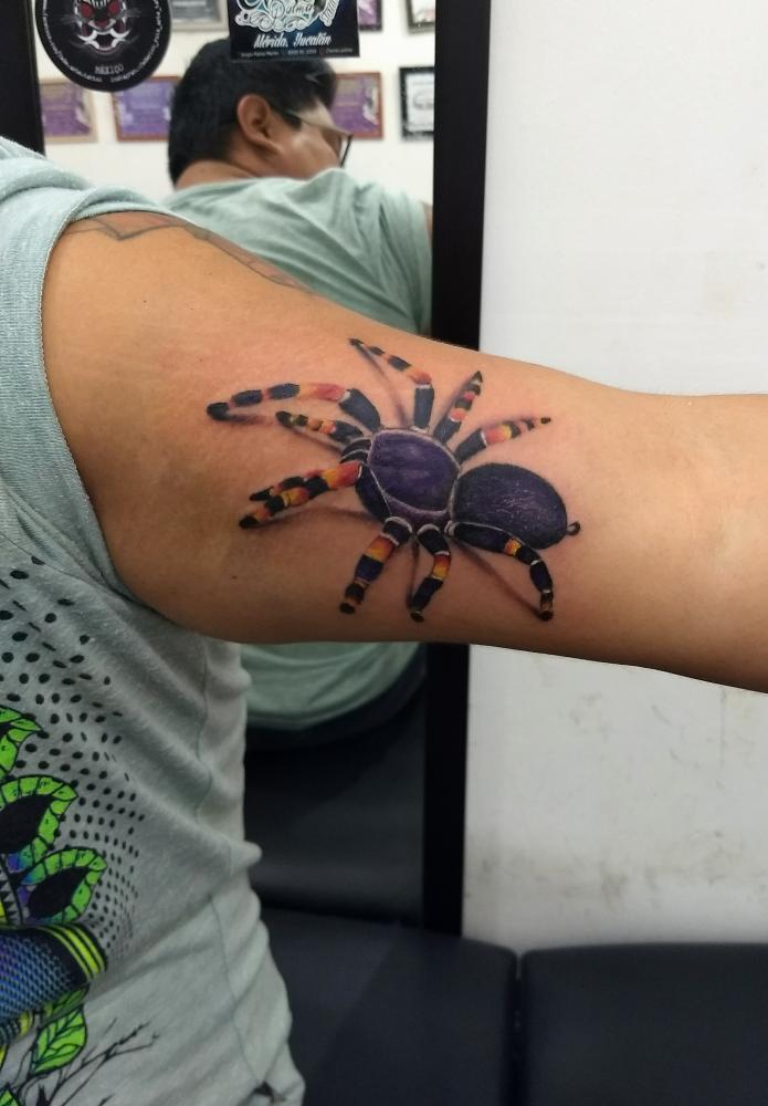 Araña tatuaje realizado por Checko Palma Tattoo