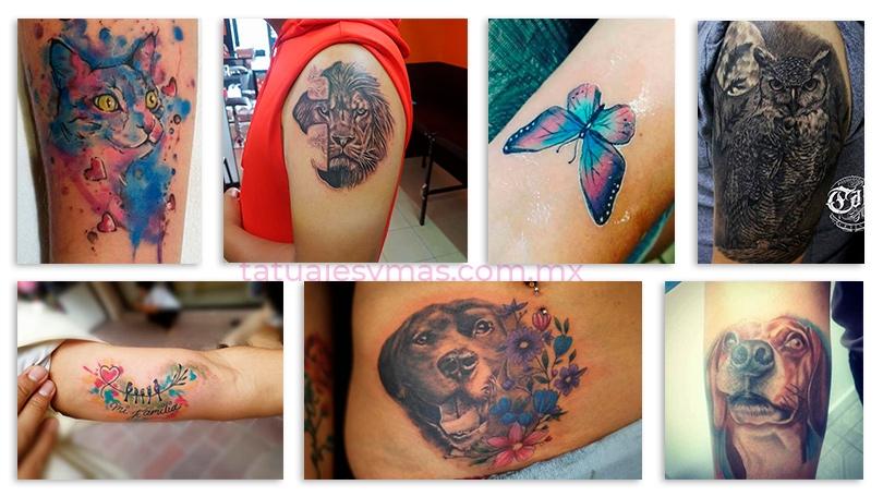 Ideas de tatuajes de animales realizados por artistas mexicanos